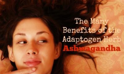 5 Major Benefits of the Indian Adaptogen Ashwagandha (#2 is best)